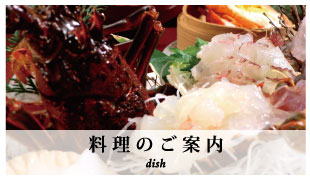 banner_dish